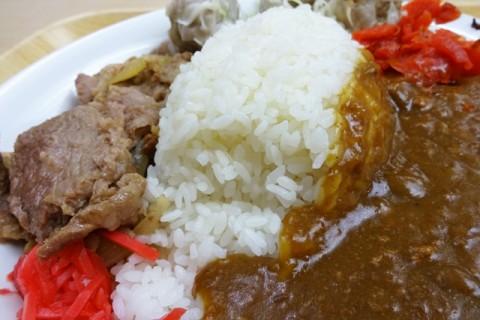 見よ、美味しそうなこの姿。ご飯を中心に牛丼とカレーが味わえる。